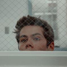 Teen Wolf Mtv, Teen Wolf Boys, Teen Wolf Dylan, Teen Wolf Stiles, Teen Wolf Cast, Dylan O'brien, Dylan Thomas, Dylan O Brien Cute, Looks Teen