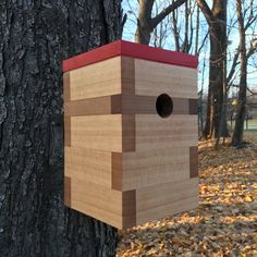Bird House Kits Make Great Bird Houses Bird House Plans, Bird House Kits, Decorative Bird Houses, Bird Houses Diy, Cute Birds, Small Birds, Building Bird Houses, Wine Cork Birdhouse, Modern Birdhouses