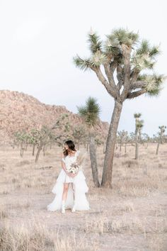 This Joshua Tree Elopement featured some rad, fashion- forward wedding outfits and DIY dried flower bouquets and centerpieces! Dried Flower Bouquet, Flower Bouquets, Wedding Outfits, Wedding Dresses, Bridal Portrait Poses, Most Beautiful Images, Bridal Pictures, Green Wedding Shoes, Bridal Looks
