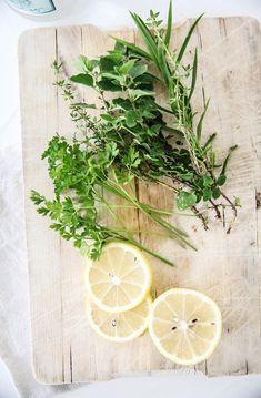 Fresh herbs and lemon. Photographer Kirstine Mengel like this www.greennutrilabs.com