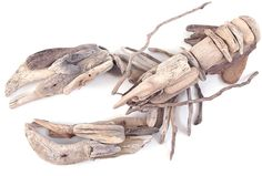 Beautiful and clever! Cornish Driftwood Lobster by local Padstow artist Susie Ray
