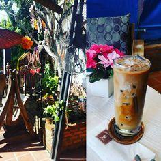 朝から散策ですでに14000歩歩いた 私にしては快挙の数字 ちょっとカフェで休憩 #doichangcoffee #chiangmai #thapaeroad
