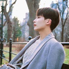 Seventeen Album, Jeonghan Seventeen, Woozi, Wonwoo, Seoul, Choi Hansol, Korea, Seventeen Wallpapers, Seungkwan