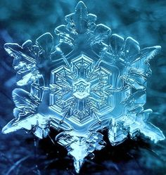 (Dr. Emotto's) magnified water crystal exposed to the word & feelings of love ❤