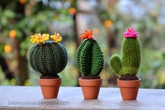 Beautiful crochet cacti