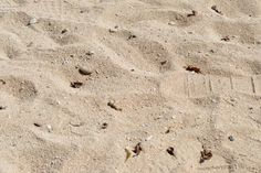 Le Morne Beach - 1 (2)