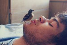 Hey little bird.