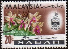 Sabah 1965 Orchids Phalaenopsis Violacea Fine Used SG 430 Scott 23 Other Asian and British Commonwealth Stamps HERE!