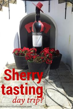 A day trip from #Seville, #Jerez de la Frontera is a great place to try some sherry. It is one of the oldest #wines in the world and a defining product of this region of #Spain. Check out more ideas for day trips from Seville http://devoursevillefoodtours.com/best-day-trips-from-seville/