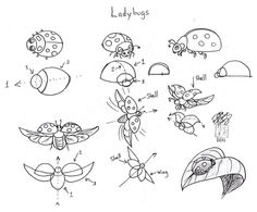 Draw Ladybugs by *Diana-Huang on deviantART