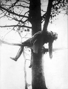 A killed German lieutenant on his post in a tree, from where he shot at allied soldiers, 1915
