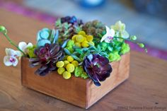Centerpieces one guest at each table can take home and plant in the garden... What plants to use? Rocks too?