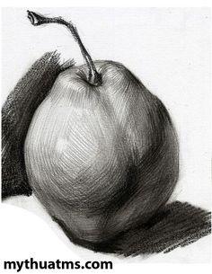 Pencil Drawings Of Nature, Pencil Sketch Drawing, Cool Art Drawings, Realistic Drawings, Art Sketches, Easy Still Life Drawing, Still Life Sketch, Figure Drawing Reference, Art Reference Poses