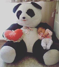 Alguém já encontrou um substituto para quando o papai sair pra trabalhar... 🐼👶🏻😍❤️  #papaipanda #babybella #bella #paidemenina #bb9 #bebebaraba #bebe9 #renanbarabanov