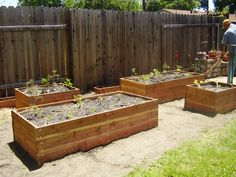 raised bed gardening - Google Search