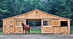 36x24 Low Profile Horse Barns