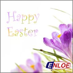 Wishing everyone a safe and Happy Easter! #EasterSunday #EnloeResidential