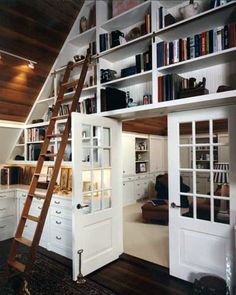 Interesting Built-Ins with library ladder