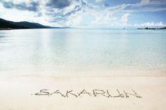 Sakarun beach, Long Island,Croatia