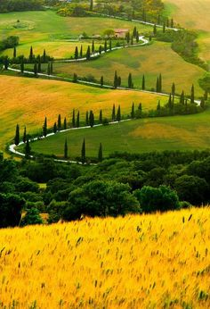 Toscana, Italia  SOME DAY SOME TIME, PROBABLY WHEN I'M OLD AND GREY...........