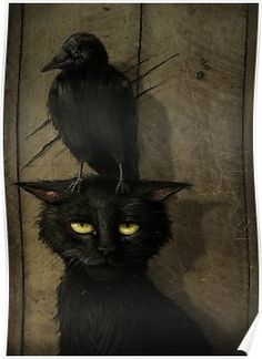 """the raven and the cat (small raven that is. or perhaps the artist is one of those who thinks """"raven"""" and """"crow"""" are synonymous. Pinterest Arte, The Raven, Raven Art, Crow Art, Illustration Art, Illustrations, Arte Obscura, Crows Ravens, Pics Art"""