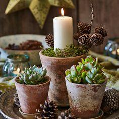 Natural Christmas, Nordic Christmas, Christmas Love, Rustic Christmas, Christmas Crafts, Christmas Flowers, Seasonal Decor, Fall Decor, Holiday Decor