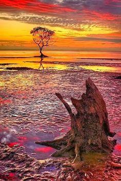 Beachmere, Australia ~Beautiful Amazing World Beautiful Sunset, Beautiful World, Beautiful Places, Beautiful Pictures, Amazing Photography, Nature Photography, Landscape Photography, Travel Photography, Dame Nature