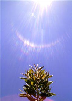Manipura*Chakra plexo solar*SOL