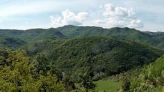 L'irresistibile fascino della Natura, Appennini tosco-romagnoli, nei pressi di Tredozio. http://winedharma.com/it/cantina/agriturismo-ca-de-monti#