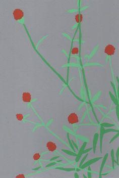 植物。2018/2/5
