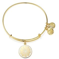 Alex and Ani Zest for Life Expandable Wire Bracelet ($38) ❤ liked on Polyvore featuring jewelry, bracelets, accessories, bracelet bangle, stackable bangles, hinged bangle, wire bangles and alex and ani bangles