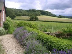 Cools Organic Farm Cottages, Wiltshire. View by the side of The Piggery http://www.organicholidays.com/at/2307.htm