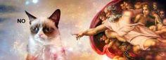 IGLESIA DE LA NUEVA ERA: La Prueba Definitiva de que los Gatos No Son Creación de Dios