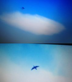2015, So California, C Wilson snaps two photographs of a thunderbird and then its return with a two legged alien, most likely these thunderbirds have returned to destroy aliens