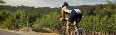 ride through vineyards
