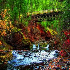 just off the Red Lake Road outside Kamloops BC -- Curated by: Desert City Security Inc. Places In Usa, Places To Travel, Places To See, Canada Travel, Canada Trip, Red Lake, Banff National Park, Adventure Is Out There, Vacation Trips