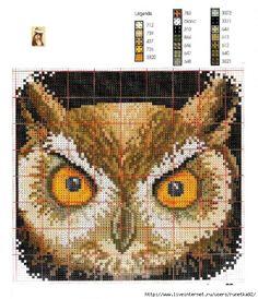 Cross-stitch Owl