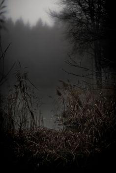 Autumn gray/black