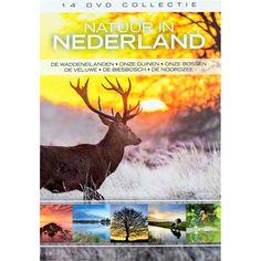 Natuur in Nederland  Description: Natuur in Nederland geeft op adembenemende wijze een beeld van de variëteit aan leven in onze Nederlandse natuur. Een unieke kijk in verborgen werelden zowel boven als onder water. De mooiste en meest zeldzame planten en prachtige dieren worden op schitterende wijze vertoond. Laat je verrassen door deze 14 dvd box waarin mysteries worden ontrafeld en opmerkelijke rituelen van dichtbij in beeld worden gebracht en kom zo alles te weten over de natuur die we zo…