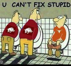 @Jessica Berry Royal  Sorry Jess, this was too funny!  Love ya! Arkansas Razorbacks - Hilarious!