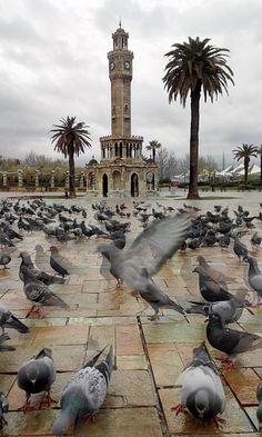 #izmir #saat #kulesi #konak #meydan #kuşlar