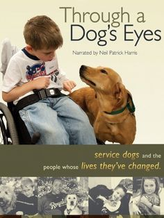 Through a Dog's Eyes - Documentary explores the human-canine bond through the moving stories of service dogs and the people whose lives they change.