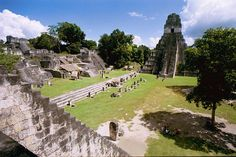 Tikal is a captivating and fascinating site amid natural beauty. The site can be visited in one day but we recommend you spend two full days. Virgin Holidays, Romantic Breaks, Tikal, Cultural Experience, Central America, World Heritage Sites, Family Travel, Adventure Travel, Caribbean