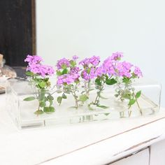"""Aerosil 8-hole Vase By Chive 29.99 at shopruche.com. Modern 8-hole rectangular vase holds pretty flowers and be placed upon a bookshelf or desk to brighten up your living or office space.  Approx. 8""""L x 3.75"""" x 2""""H"""