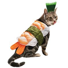 Sushi Halloween Cat Costume -- this makes me think of a few special cat ladies in my life