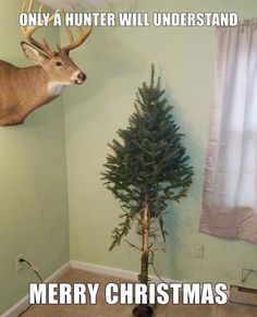 Deer Hunting Quotes, Hunting Jokes, Hunting Gear, Bow Hunting, Deer Pictures, Funny Pictures, Big Deer, Funny Deer, Redneck Humor