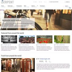 Serpent – WordPress Theme for Social Network | Best WordPress Themes 2013