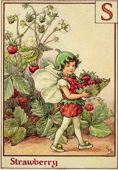 """The Strawberry Fairy. From """"A Flower Fairy Alphabet"""" by Cicely M. Barker (1934)"""