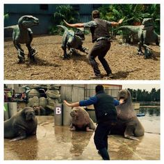 """Inspired by Chris Pratt's character in 'Jurassic World', zookeepers are recreating the already-iconic """"controlling the raptors"""" pose."""