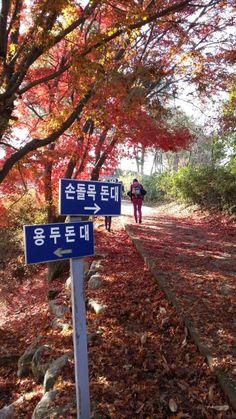 Hiking in Korea | #Ganghwa #Nadeulgil